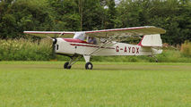 G-AYDX - Private Beagle A61 Terrier aircraft
