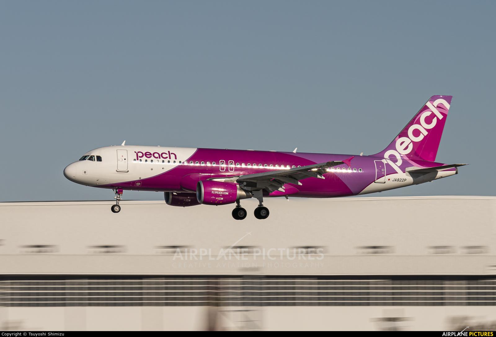 Peach Aviation JA822P aircraft at Tokyo - Narita Intl