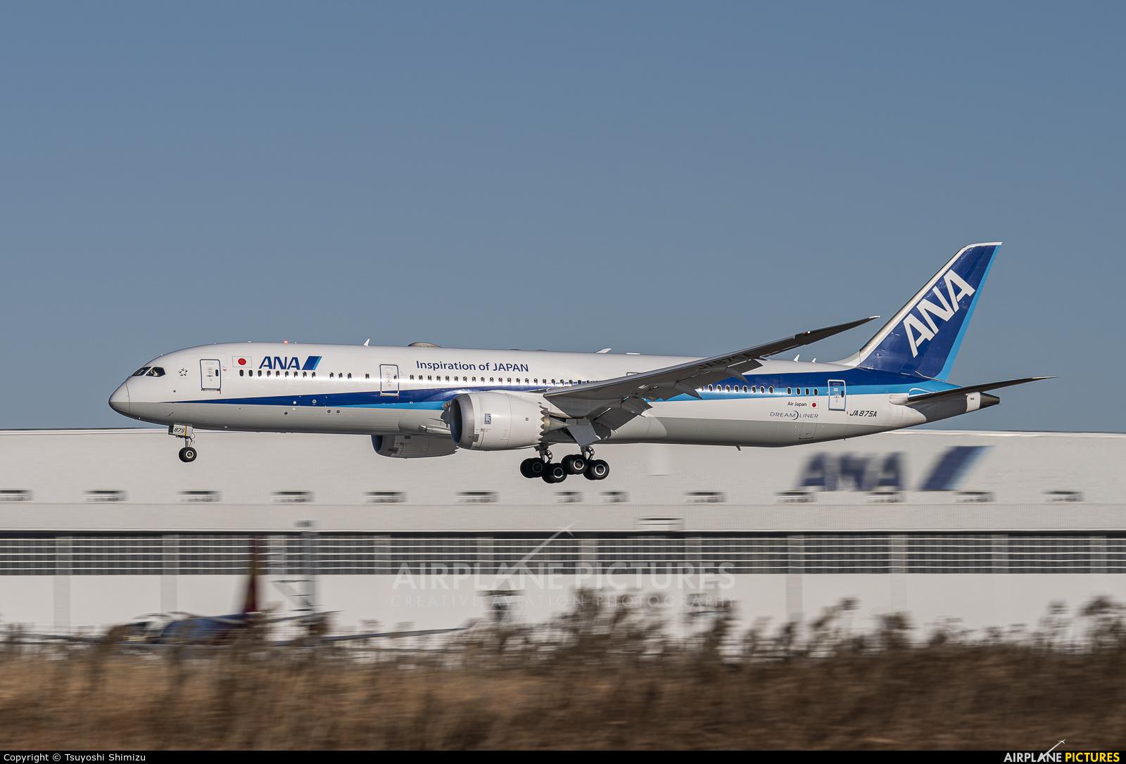ANA - All Nippon Airways JA875A aircraft at Tokyo - Narita Intl