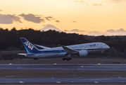 JA820A - ANA - All Nippon Airways Boeing 787-8 Dreamliner aircraft