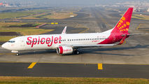 VT-SGV - SpiceJet Boeing 737-800 aircraft