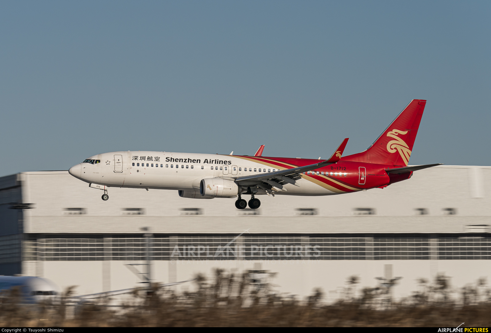 Shenzhen Airlines B-1712 aircraft at Tokyo - Narita Intl