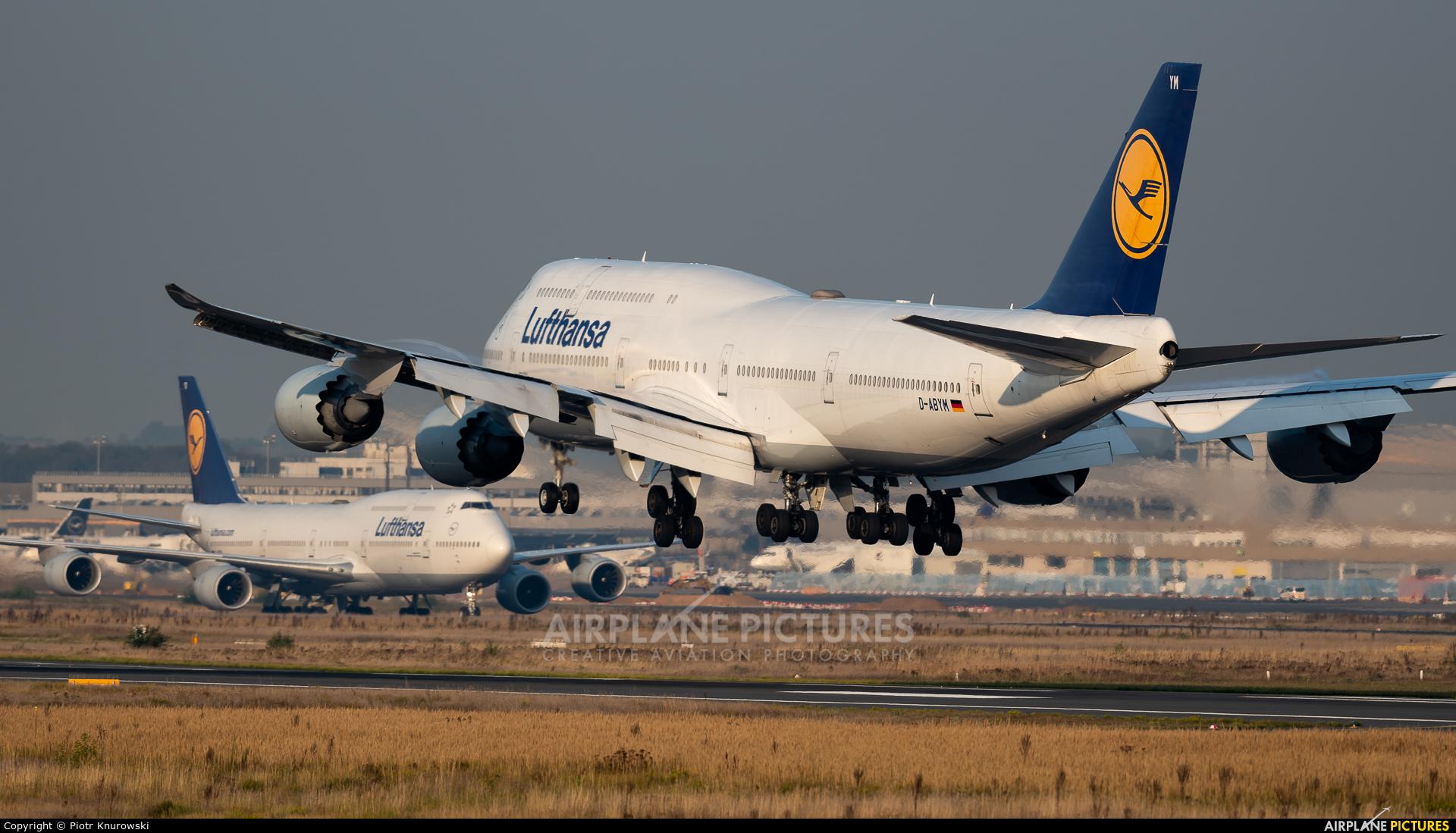 Lufthansa D-ABYM aircraft at Frankfurt