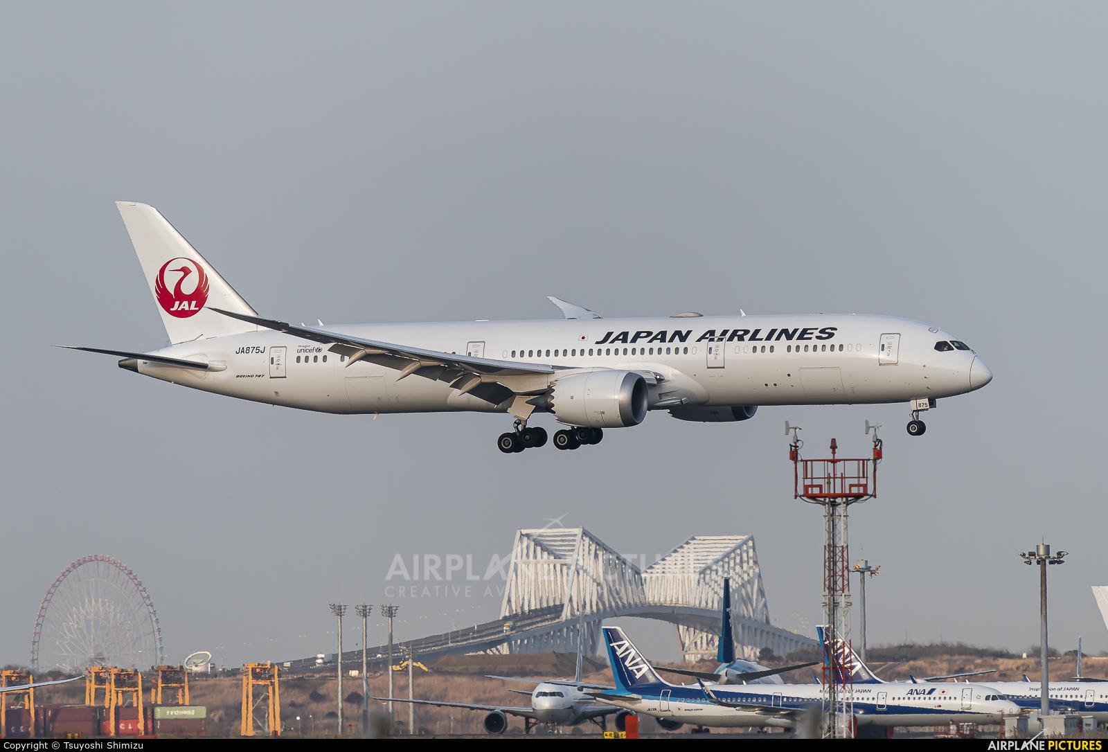 JAL - Japan Airlines JA875J aircraft at Tokyo - Haneda Intl