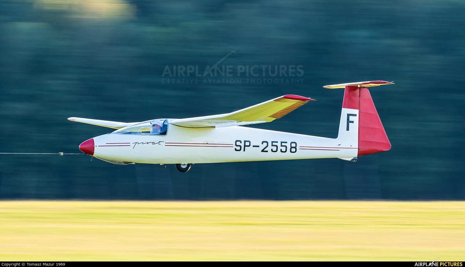 Aeroclub ROW SP-2558 aircraft at Rybnik - Gotartowice