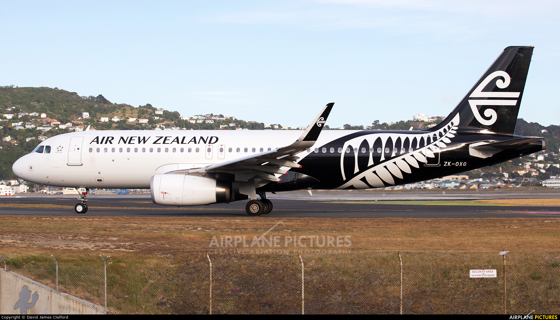 Air New Zealand ZK-OXG aircraft at Wellington Intl