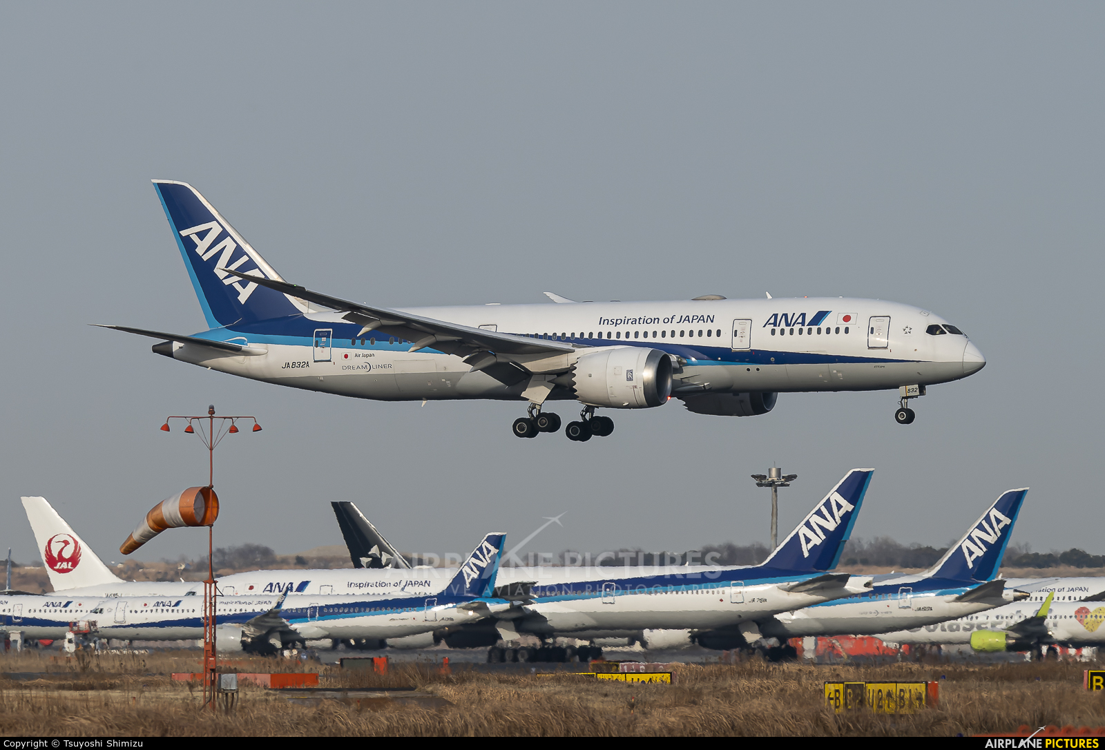 ANA - All Nippon Airways JA832A aircraft at Tokyo - Haneda Intl