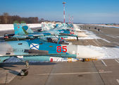 - - Russia - Navy - Airport Overview - Apron aircraft