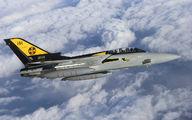 ZG753 - Royal Air Force Panavia Tornado F.3 aircraft