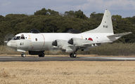 9161 - Japan - Maritime Self-Defense Force Lockheed UP-3D Orion aircraft