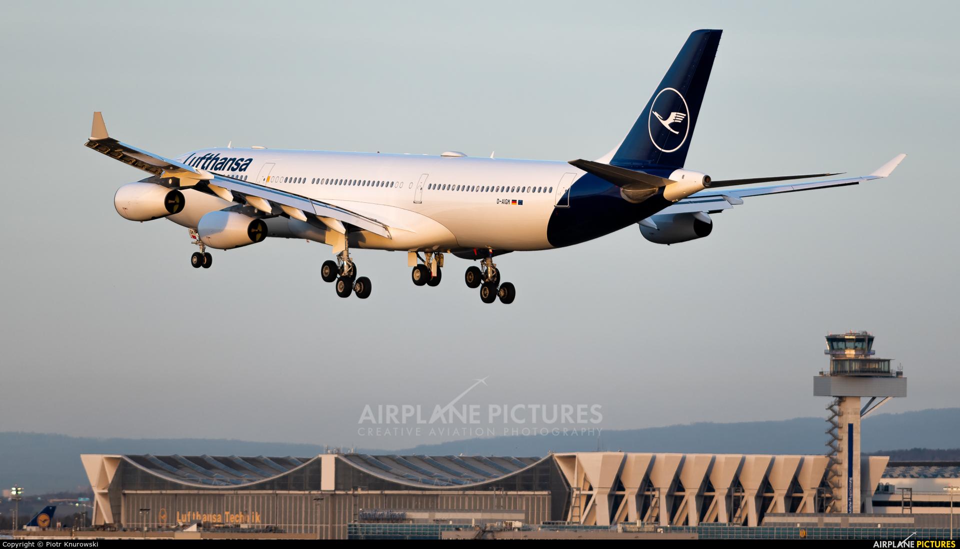 Lufthansa D-AIGM aircraft at Frankfurt