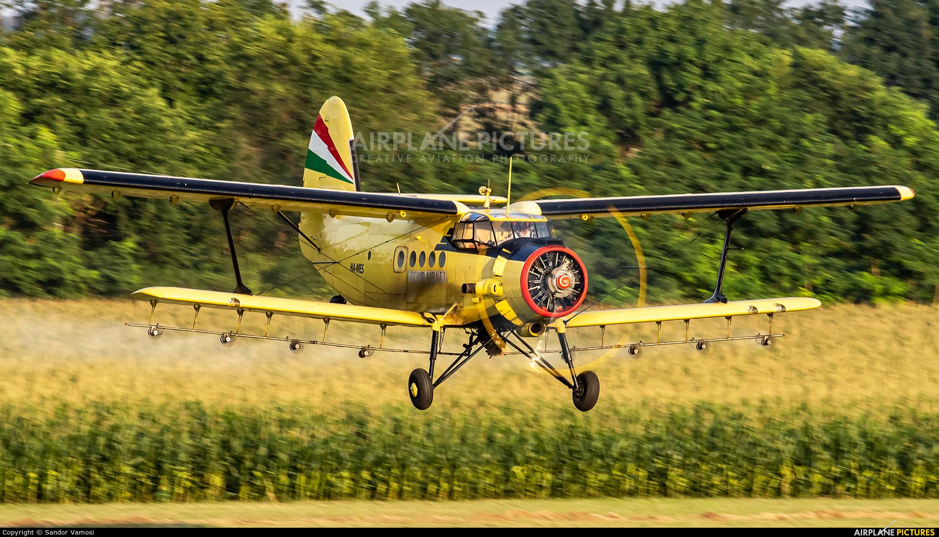 Private HA-MES aircraft at Off Airport - Hungary