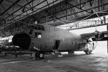 T.10-10 - Spain - Air Force Lockheed C-130H Hercules