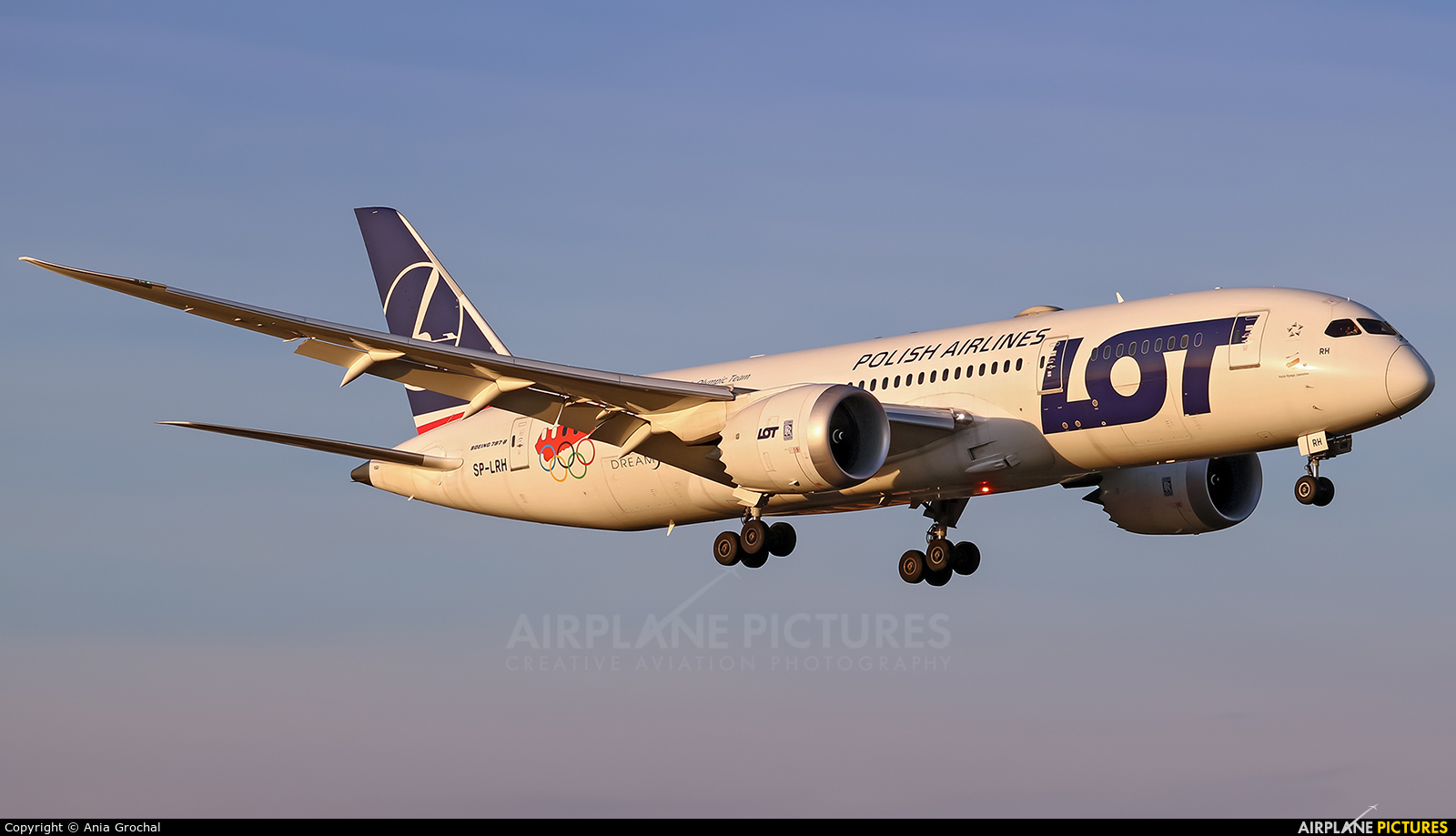 LOT - Polish Airlines SP-LRH aircraft at Warsaw - Frederic Chopin