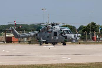 ZD262 - Royal Navy Westland Lynx HMA.8DSP