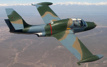 E-202 - Argentina - Air Force Morane Saulnier MS.760 Paris
