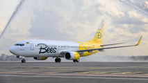 New livery for Bees Airline title=