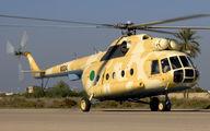 8334 - Libya - Air Force Mil Mi-8T aircraft