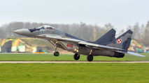 Poland - Air Force 4116 image