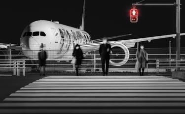 JA873J - JAL - Japan Airlines Boeing 787-9 Dreamliner