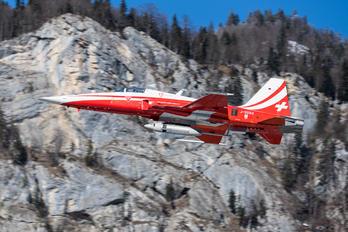 J-3082 - Switzerland - Air Force: Patrouille Suisse Northrop F-5E Tiger II