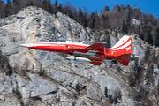 J-3082 - Switzerland - Air Force: Patrouille Suisse Northrop F-5E Tiger II aircraft