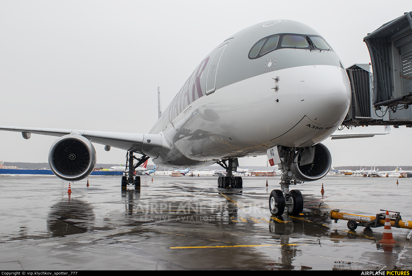 Qatar Airways A7-ANQ aircraft at Moscow - Domodedovo