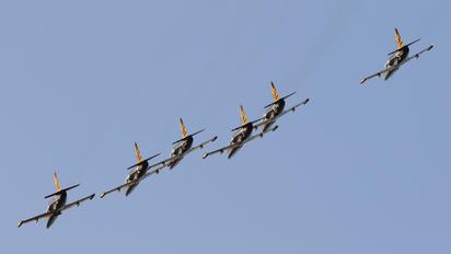 RF-49813 - DOSAAF / ROSTO Aero L-39C Albatros