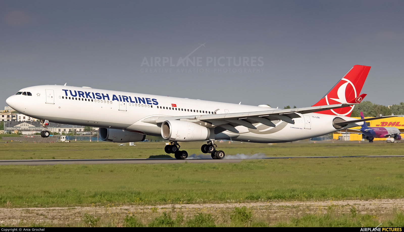 Turkish Airlines TC-LOA aircraft at Warsaw - Frederic Chopin