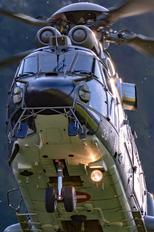 T-333 - Switzerland - Air Force Aerospatiale AS532 Cougar