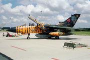 43+96 - Germany - Air Force Panavia Tornado - IDS aircraft