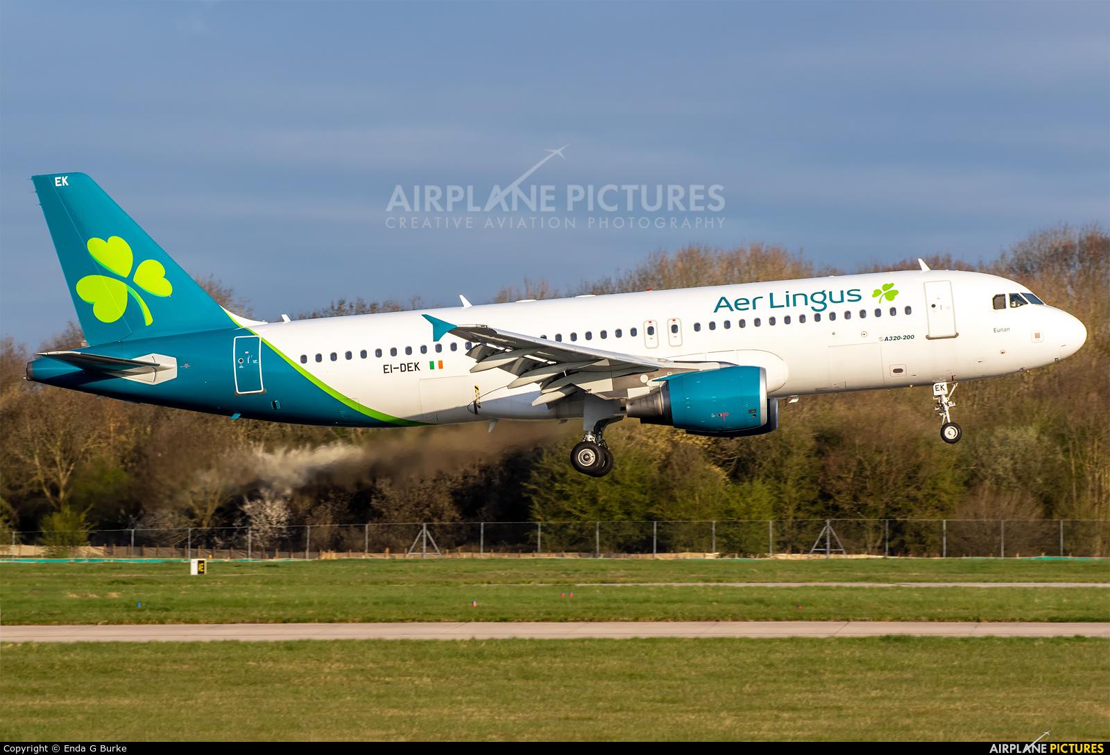 Aer Lingus EI-DEK aircraft at Manchester