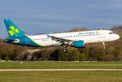 Aer Lingus EI-DEK image