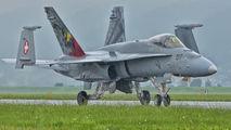 J-5017 - Switzerland - Air Force McDonnell Douglas F-18C Hornet aircraft