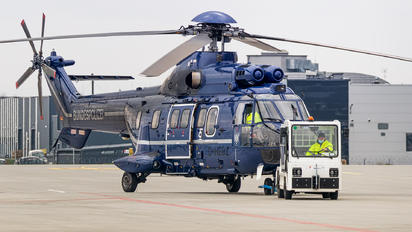 D-HEGZ - Bundespolizei Eurocopter AS332 Super Puma
