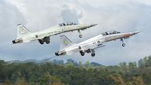 79-01721 - Taiwan - Air Force Northrop F-5F Tiger II aircraft