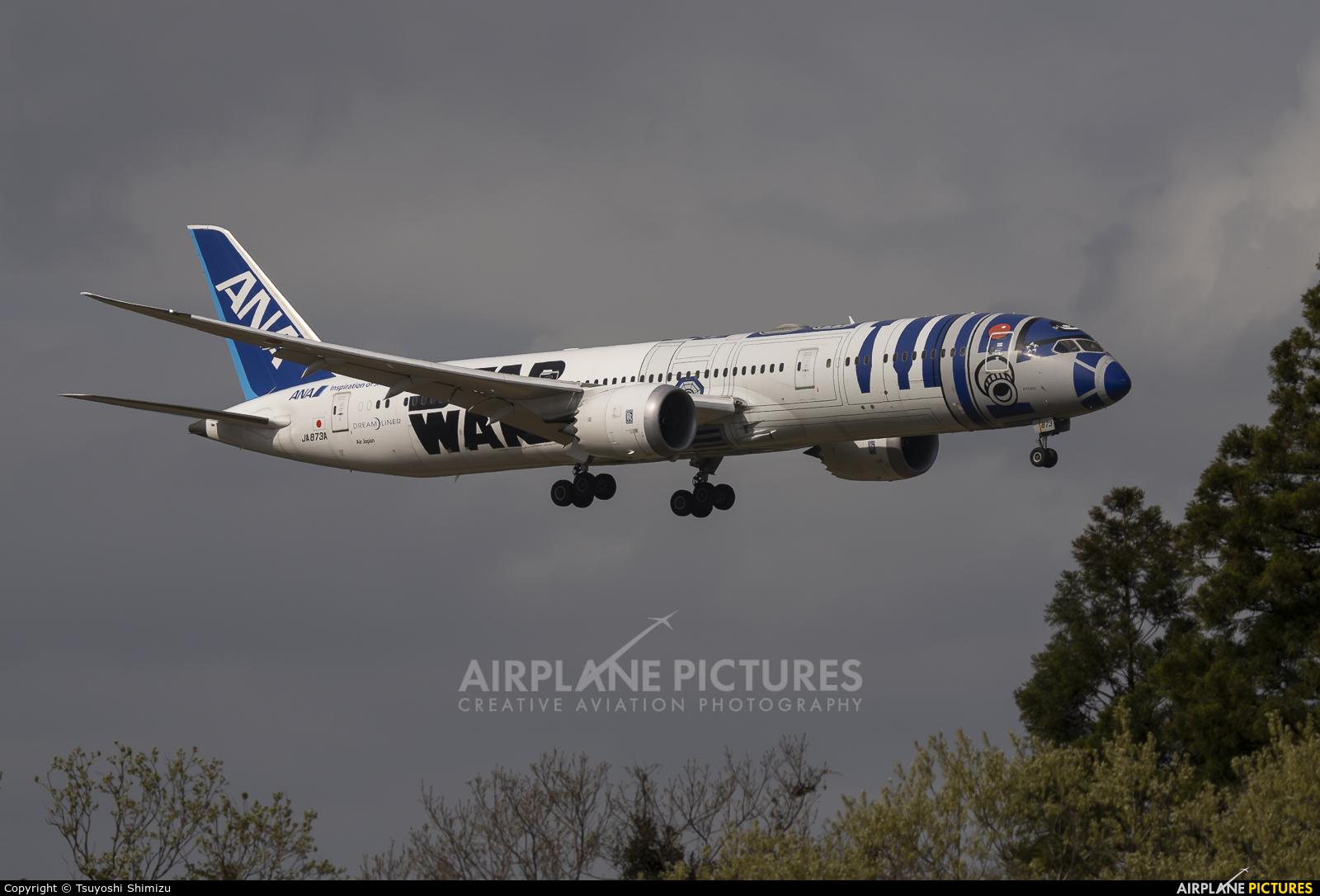 ANA - All Nippon Airways JA873A aircraft at Tokyo - Narita Intl