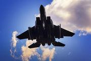 USA - Air Force 91-0604 image