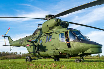 0610 - Poland - Army PZL W-3PL Głuszec