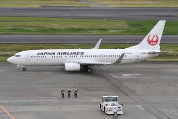 JA303J - JAL - Japan Airlines Boeing 737-800