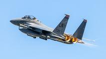 91-0313 - USA - Air Force McDonnell Douglas F-15E Strike Eagle aircraft