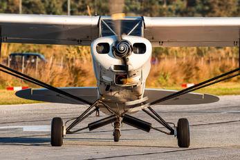 EC-AJE - Private Piper PA-18 Super Cub