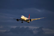 Turkish Airlines TC-LLB image