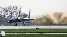 84-0019 - USA - Air Force McDonnell Douglas F-15C Eagle aircraft