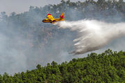 UD.13-22 - Spain - Air Force Canadair CL-215T aircraft