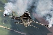 Belgium - Air Force FA-101 image