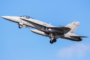 HN-445 - Finland - Air Force McDonnell Douglas F-18C Hornet