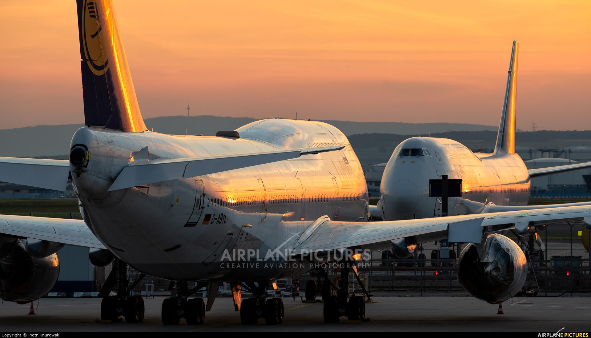 Lufthansa D-ABYL aircraft at Frankfurt