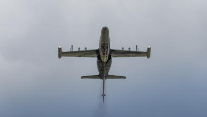 6066 - Czech - Air Force Aero L-159A  Alca