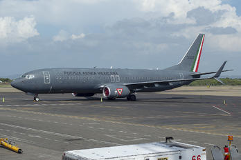 3527 - Mexico - Air Force Boeing 737-800